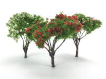 Virágzó bokor 6,5cm 3db/csomag