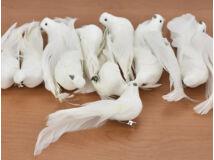 Fehér galamb 12db/doboz