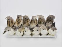 Szürke-barnna madár nagy 12db/doboz