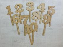 Natúr fa - Beszúrható számok vegyes 11db/csomag