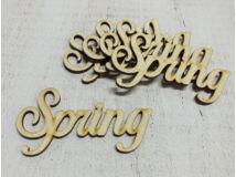 """Natúr fa - """"Spring"""" felirat 10cm 5db/csomag"""