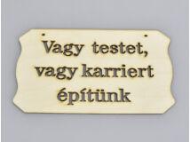 """Natúr fa - """"Vagy testet vagy karriert.."""" tábla 10,8x19,7cm"""