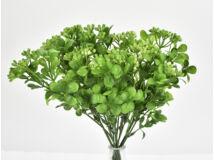 Bogyós bukszus színes zöld 2db/csomag