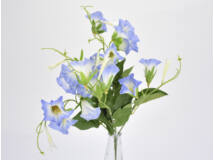 Petúnia csokor kék