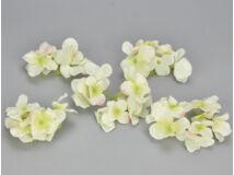 Krém hortenzia fej 5db/csomag