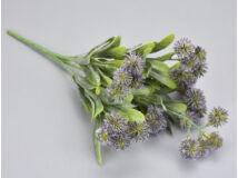 Carduus csokor lila