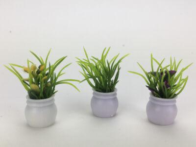 Mini cserepes növény 3db/csomag