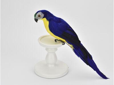 Papagáj sötétkék - sárga 36cm