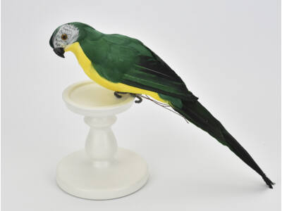 Papagáj zöld 36cm
